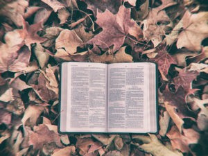 Inerrancy: Still Hazy After All These Years